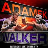 Video - Tomasz Adamek vs Travis Walker - full fight video IBF