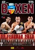 Alexander Alekseev vs Garrett Wilson - full fight Video 2013
