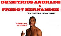Demetrius Andrade vs Freddy Hernandez - full fight Video 2013