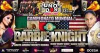 Video - Ava Knight vs Mariana Juarez - full fight video pelea WBC
