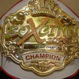Willie Monroe Jr vs Brandon Adams - full fight Video 2014