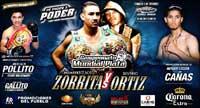 Julio Ceja vs Henry Maldonado - full fight Video pelea 2013