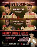 Hugo Centeno Jr vs Gerardo Ibarra - full fight Video pelea 2014