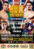 Nathan Cleverly vs Robin Krasniqi - full fight Video WBO 2013