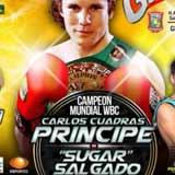 Carlos Cuadras vs Jose Salgado - full fight Video pelea 2014