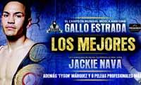 Juan Francisco Estrada vs Joebert Alvarez full fight Video 2014