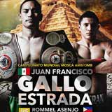 Juan Estrada vs Rommel Asenjo - full fight Video 2015 result