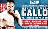 Juan Francisco Estrada vs Richie Mepranum - full fight Video 2014 WBA