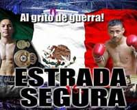 Juan Francisco Estrada vs Giovani Segura full fight Video 2014