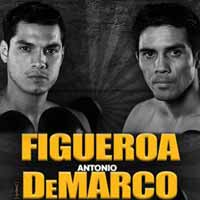 Omar Figueroa vs DeMarco - full fight Video 2015
