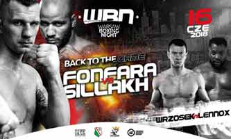 Andrzej Fonfara vs Ismayl Sillah full fight Video 2018 walka