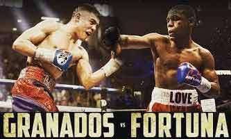 Javier Fortuna vs Adrian Granados full fight Video 2018