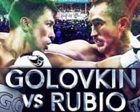 Gennady Golovkin vs Rubio - full fight Video pelea 2014 WBA