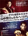 Jorge Linares vs Francisco Contreras - full fight Video pelea 2013