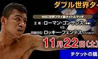 Roman Gonzalez vs Rocky Fuentes - full fight Video 2014 Wbc