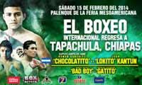 Roman Gonzalez vs Juan Kantun - full fight Video pelea 2014