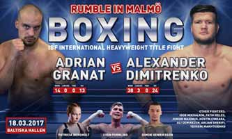 Adrian Granat vs Alexander Dimitrenko - full fight Video 2017
