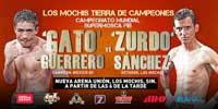 Rodrigo Guerrero vs Juan Carlos Sanchez Jr - full fight Video pelea completa