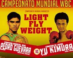 Pedro Guevara vs Yu Kimura - full fight Video 2015 WBC