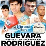 Pedro Guevara vs Mario Rodriguez 2 - full fight Video pelea WBC 2013