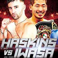 Lee Haskins vs Ryosuke Iwasa - full fight Video 2015 IBF result