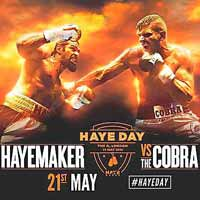 David Haye vs Arnold Gjergjaj - full fight Video 2016 result