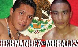 Alejandro Hernandez vs Morales - full fight Video 2015 pelea