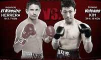 Mauricio Herrera vs Ji-Hoon Kim - full fight video 2013 AllTheBestVideos