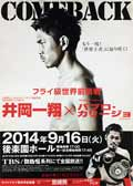 Kazuto Ioka vs Pablo Carrillo - full fight Video 2014 井岡 一翔