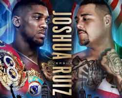 Anthony Joshua vs Andy Ruiz full fight Video 2019 WBA