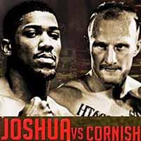 Anthony Joshua vs Gary Cornish - full fight Video 2015 result