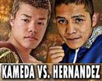 Tomoki Kameda vs Alejandro Hernandez - full fight Video 2014