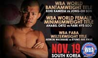 Koki Kameda vs Jung-Oh Son - full fight Video WBA 2013