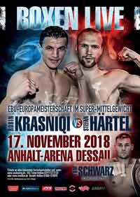 Robin Krasniqi vs Stefan Haertel full fight Video 2019