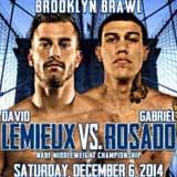 David Lemieux vs Gabriel Rosado - full fight Video 2014 result