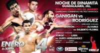 Ganigan Lopez vs Mario Rodriguez - full fight Video pelea 2014
