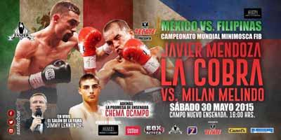 Javier Mendoza vs Milan Melindo - full fight Video 2015 IBF