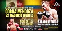 Javier Mendoza vs Mauricio Fuentes - full fight Video 2015 result