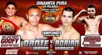 Juan Jose Montes vs Martin Casillas - full fight Video pelea 2013