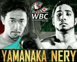 Shinsuke Yamanaka vs Luis Nery - full fight Video 2017 WBC