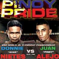 Donnie Nietes vs Juan Alejo - full fight Video 2015 WBO
