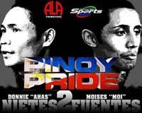 Donnie Nietes vs Moises Fuentes 2 - full fight Video 2014 WBO