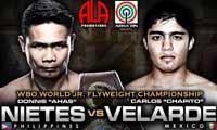 Donnie Nietes vs Carlos Velarde - full fight Video 2014 Wbo