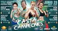 Oswaldo Novoa vs Alcides Martinez - full fight Video pelea 2014