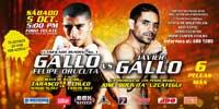 Felipe Orucuta vs Javier Gallo - full fight Video pelea 2013-10-05