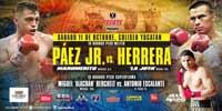 Jorge Paez Jr vs Aaron Herrera - full fight Video pelea 2014