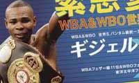 Guillermo Rigondeaux vs Amagasa - full fight Video 2014 Wbo