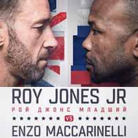 Roy Jones Jr vs Enzo Maccarinelli - full fight Video 2015 result