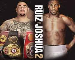 Andy Ruiz Jr vs Anthony Joshua 2 full fight Video 2019 WBA