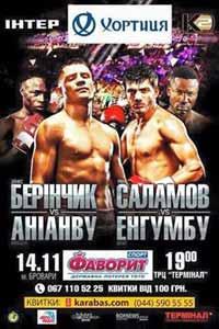 Umar Salamov vs Doudou Ngumbu - full fight Video 2015 result